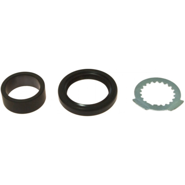 Counter shaft seal kit 254023