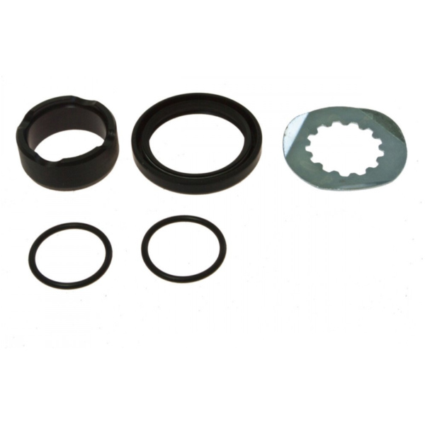 Counter shaft seal kit 254019