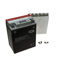 Motorcycle Battery YTX14AHL-BS JMT