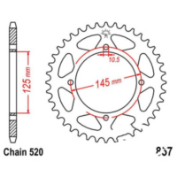Rear sprocket 41 tooth pitch 520 JTR85741