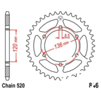 Rear sprocket 41 tooth pitch 520 JTR84641