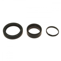 Counter shaft seal kit 254009