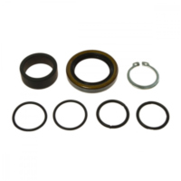 Counter shaft seal kit 254001