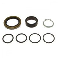 Counter shaft seal kit 254003