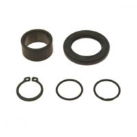 Counter shaft seal kit 254018