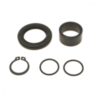 Counter shaft seal kit 254017