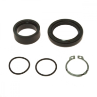 Counter shaft seal kit 254012