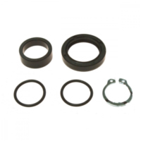 Counter shaft seal kit 254006