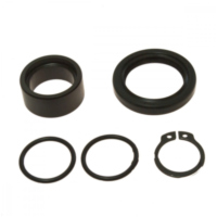 Counter shaft seal kit 254029