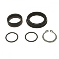 Counter shaft seal kit 254030