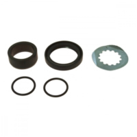 Counter shaft seal kit 254021