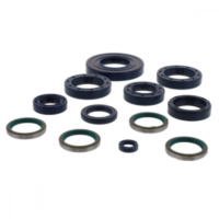 Engine oil seal kit P400110400024 für Ducati Monster Dark 620 M403AC/AD 2005