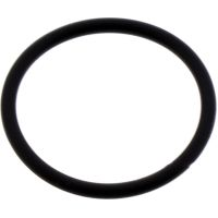 O-ring (orig spare part)