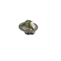 Thermostat (orig spare part) 5LP1241100