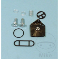 Fuel tank valve repair kit FCK21