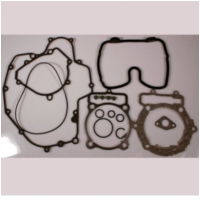 Complete gasket / seal kit P400220850256