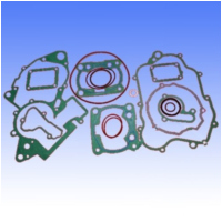 Complete gasket / seal kit P400220850128