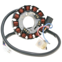 Lima Generator Lichtmaschine Stator 12 Pole für Minarelli AM6 Power Up (Moric) 36570 für Beta RR Motard Track 50  2018