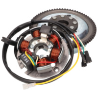 alternator stator and rotor OEM for Minarelli AM E-start MIN-38413 für Aprilia RS Extrema/Replica 50 PG000 2000